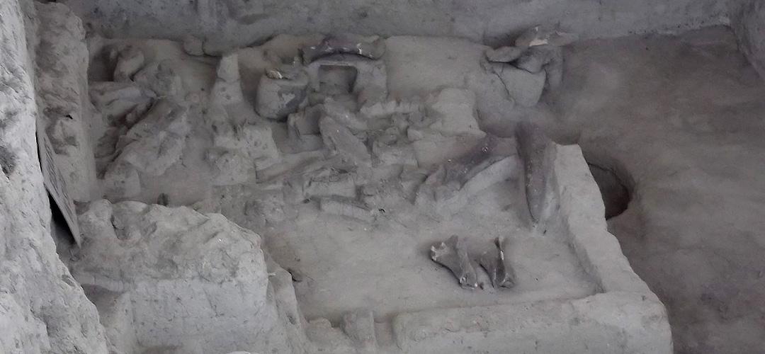 sitio-el-mamut